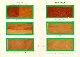 Hough's Encyclopaedia of American Woods